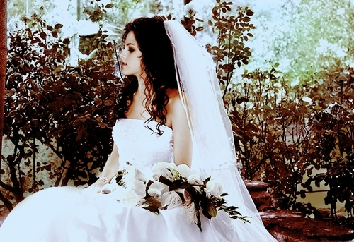 http://letterstotwilight.files.wordpress.com/2009/06/bella-s-wedding-twilight-series-6053356-500-3431.jpg