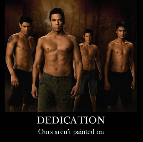 dedicationwolf
