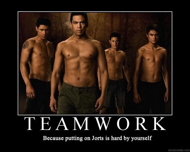 teamwordwolfpack