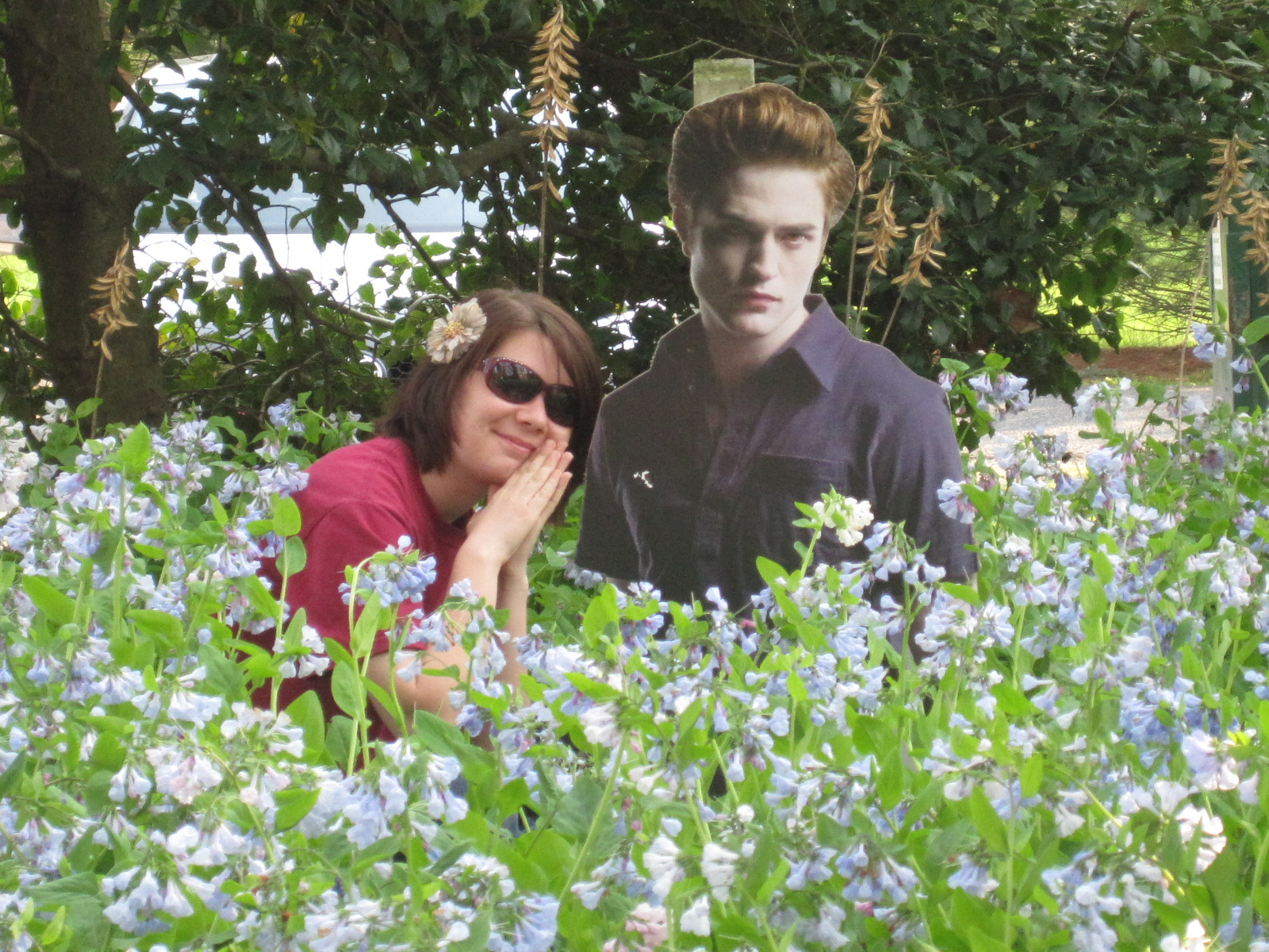 Edward and bella in the meadow twilight for The meado